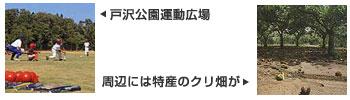 『戸沢池02』の画像