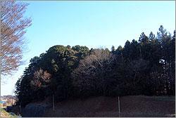『熊野古墳』の画像