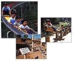 『歩崎森林公園』の画像