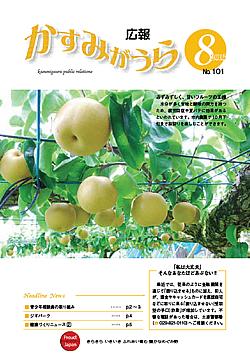 『広報かすみがうらNo101 2013年8月号(8月20日発行)』の画像