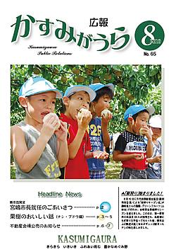『広報かすみがうらNo65 2010年8月号』の画像