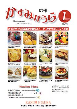 『広報かすみがうらNo46 2009年1月号』の画像