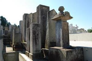 『本堂家の墓所』の画像