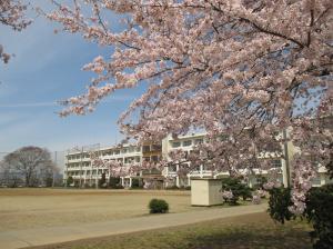 中学校入学3