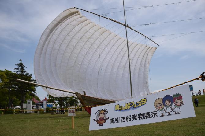 『帆引き船フェスタ2017その29』の画像