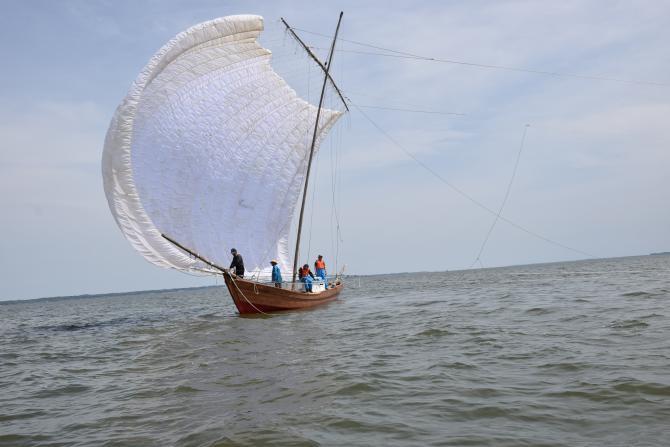 『帆引き船フェスタ2017その36』の画像