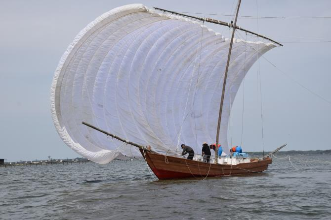 『帆引き船フェスタ2017その38』の画像