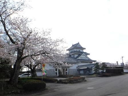 【下大津の桜】霞ヶ浦公民館_09