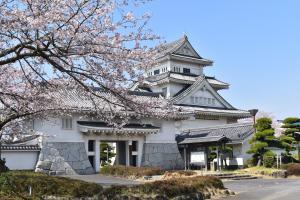 博物館大手門桜