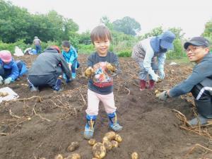 『18芋掘り3』の画像