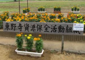 東野寺(花いっぱい事業)