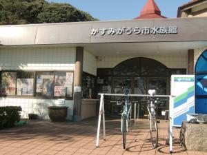 水族館(サイクルラック設置)