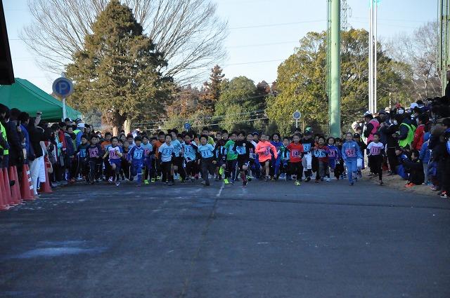 『第14回市民マラソン大会11』の画像