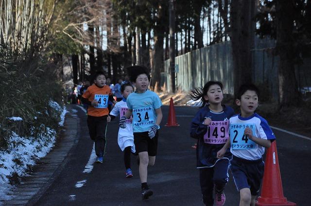 『第14回市民マラソン大会15』の画像