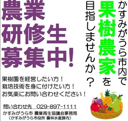 農業研修生募集03