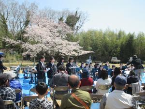 桜まつり(3)
