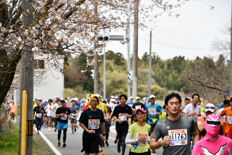 『かすみがうらマラソン2019(13)』の画像