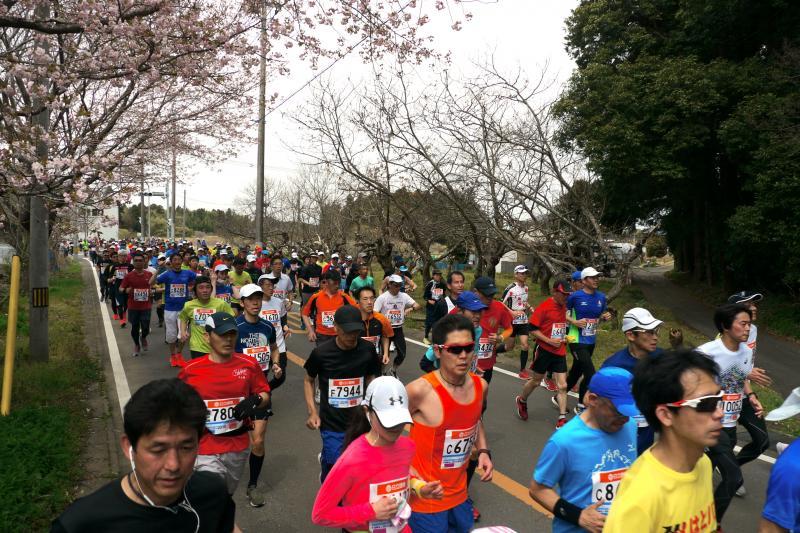 『かすみがうらマラソン2019(32)』の画像