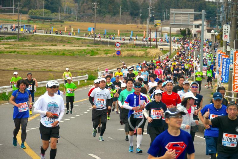 『かすみがうらマラソン2019(33)』の画像