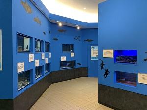 『水族館3』の画像