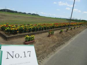 東野寺地区資源保全活動組織2020