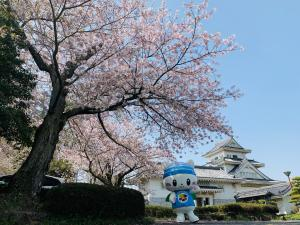 歴史博物館の桜とうにゃ
