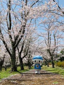 桜並木を歩くうにゃ