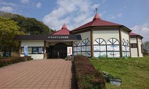 水族館 の画像