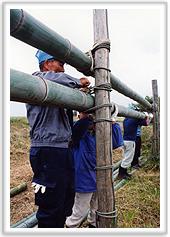 竹の乾燥 width=