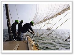 『帆足つけ縄』の画像